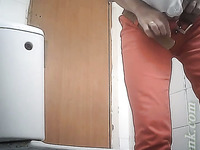 Chunky mature white ladies in the public toiletroom filmed on cam
