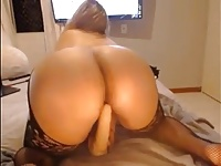 Thick Cam Girl Toying Herself