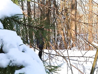 Russian redhead amateur beauty in the winter forest pisses